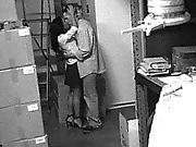 Security Cam Chronicles 5