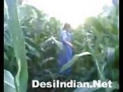 Indian Village Girl Khet Me Chudai