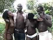 Africa X Sauvage 2