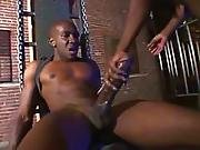General Bushdakta 20 Mandingo On Hardvideostube.com Big Black Cock