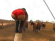 amazing,  ass ,  booty,  butt,  cameltoe,  horse,  latina,  outdoor,  public,  teen,  tight,  young