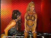 Lynn Mccrossin 04 - Woman With Muscle