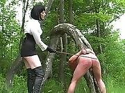bdsm,  caning,  femdom,  spanking