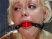 Sexy Pornstar Punishment