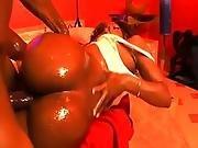 ass ,  big ass,  dick,  ebony,  fucking,  hardcore,  oiled,  vixen