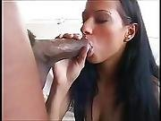 All The Girls Want To Suck The Black Cock