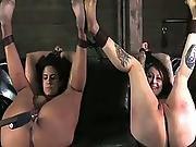 bdsm,  brunette,  chained,  fetish,  paddled,  slut