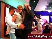 european,  groupsex,  nightclub,  orgy,  party,  pornstar,  sex