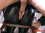 Rubber Stable Stud Part 3