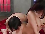 Smashing Trio Porn With Japanese Babe, Sera Ichijo
