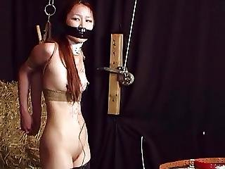 Asian, Babe, Bdsm, Bound, Brunette, Fetish, Foot, Lingerie, Milf, Nylon, Punish, Sex, Toys