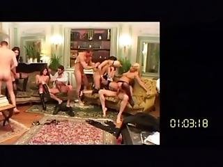 Swinger Wives Orgy Party