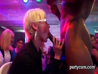 blondynka, obciąganie, brunetka, czeszka, hardcore, napalona, nago, impreza