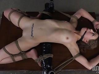 Alexa Nova - A Higher Level Of Bdsm 3