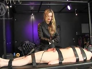 Mistress Fetish Glove