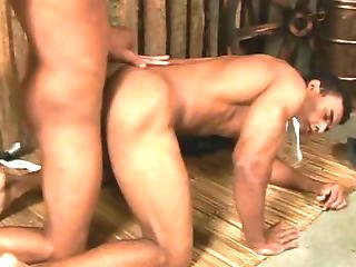 Gay Cowboys Likes One On One Anal Sex