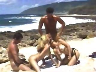 strand, blondin, klitta, doggystyle, fingring, fyrkant, hawaiian, orgasm, fitta, gnuggar, sex, trekant