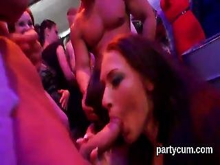 Peculiar Nymphos Get Completely Insane And Stripped At Hardcore Party