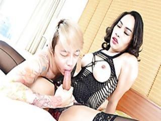 анальный, азиатский, задница, наклониться вперед, минет, брюнетка, заглотить, чертов, хардкор, транссексуал, тайский, транзистор