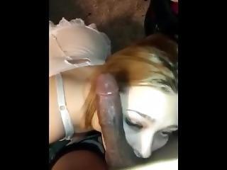 Petite Brunette Blowjob