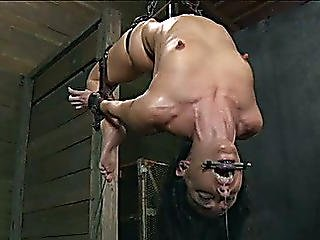 Hogtied Dark Brown Gal Suspended And Acquires Her Pussy Toyed