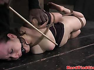 Hogtied Sub Subjected A Good Caning