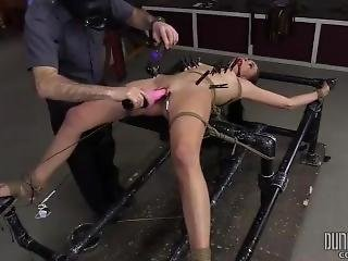 Alaina Kristar Orgasm Training