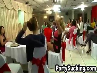 Crazy Skanks Blowing Big Dick At Sydney S Insane Surprise Party