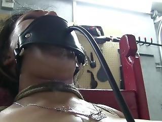 Do You Enjoy Torturing A Chair Tied Gir?