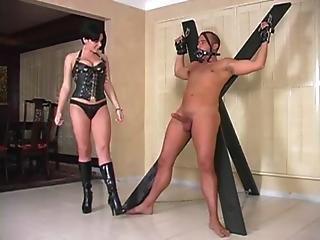 Brunette Mistress Handjobs Big Penis