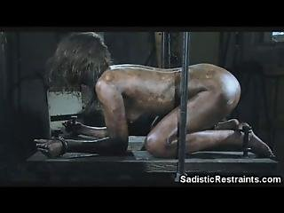 This Is For Me The Most Perverted Extreme And Twisted Bondage And Submission Vid Ver Shot On A Grooming Table That Holds Her Wrist And Ankles So She Is On All Fours A Helpless Dirty Girl Gets Roughly Cleaned Then She Has To Suck That Brutal Pervert