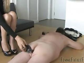 Femdom - The Business Of Humiliation