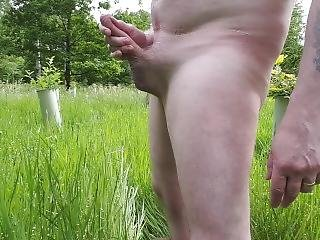 Another Wank In A Field