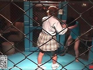 käfig, japanisch, lesbisch, ringen