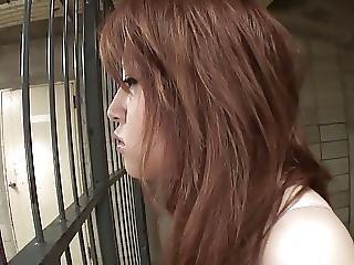 Saucy Jailbait Gives Guard A Blowjob Through The Bars