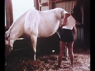 Vintage Porno - Raw sex videos as seen on xvideos, pornhub