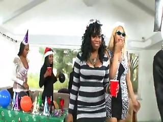 Black Amateur Swinger Party 3 cd1 - XVIDEOSCOM