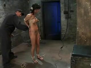 esclavitud, hogtied, aspero, sexo, solo, atada