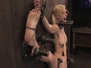 Bdsm, Blonde, Bondage, Fléxible, Nique, Ados