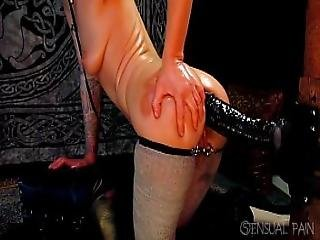 Anal Fun With Zilla Dong Short Reduced