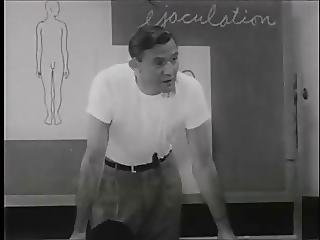 Vintage Sex Education 1957 As Boys Grow