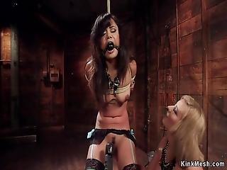 vapaa Kovacorea Rotujenvälinen porno video-klipsi