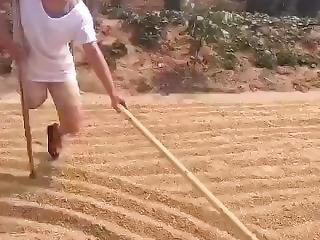 Chinese Sak One Crutch