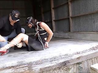 Bondage Woman Hogtied