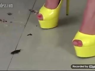 Crush In Yellow High Heels