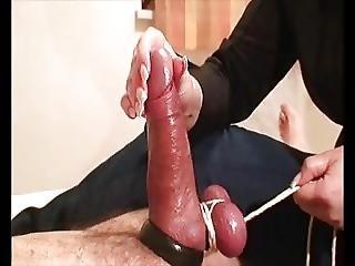 Bondage Milking Cock