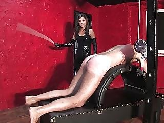Bdsm, Brunette, Caning, Femdom, Mistress, Spanking, Young