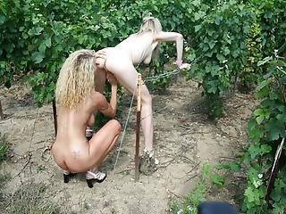 Moms And Virgin Boy In Vineyard