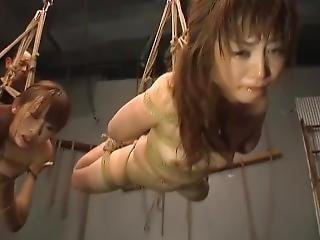asiatisk, babe, stor pupp, bondage, hardcore, japansk, små pupper, tortur