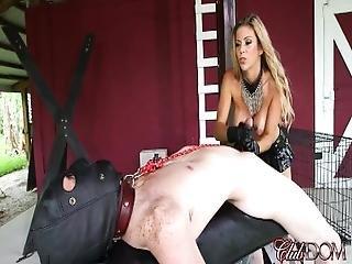 Alexis Fawx Slave Handjob
